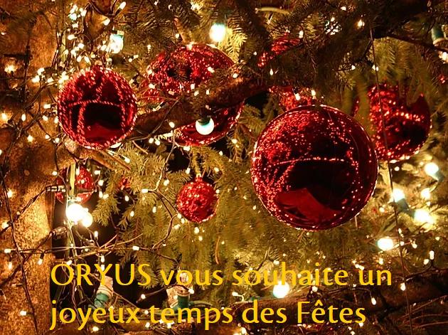 ORYUS vous souhaite de joyeuses fêtes de fin d'année
